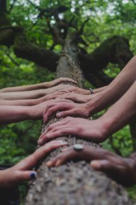 Many hands on a tree trunk - team building exercise
